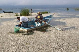 Massiv fisked�d i Mexico er et mysterium