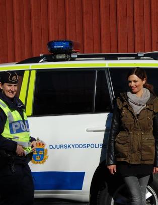 - De f�r det til i Sverige, s� hvorfor skal vi ikke f� det til i Norge?