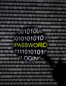 - Tidenes f�rste drap over internett vil skje innen �ret