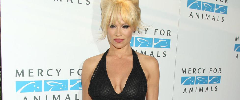 Pamela Anderson gjester �Skavlan�