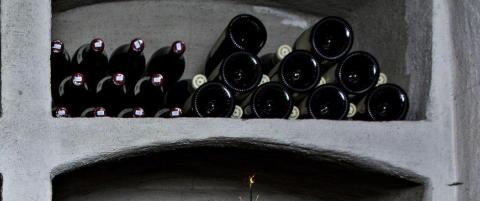 Det er blant disse vinene du skal lete etter stjernene