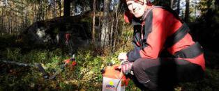 Lover avsl�ringer om norske skiskyttere: Skriver om sex, penger og politikk