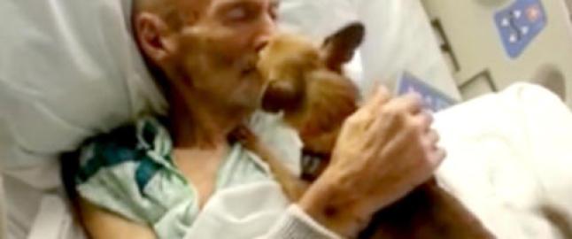 Sluttet � spise da sykehuset tok fra ham hunden