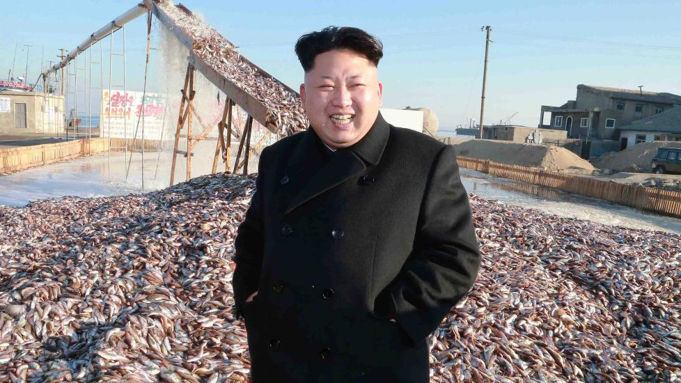 Menneskerettighetsbrudd i nord korea