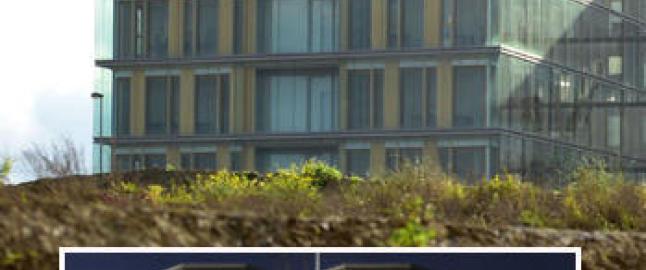 Skatteparadiset i Luxembourg avsl�rt av storlekkasje: - Apple, Skype og Disney er involvert