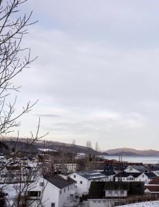Uten Tr�ndelag hadde kongeriket Norge for lenge siden v�rt nede for telling