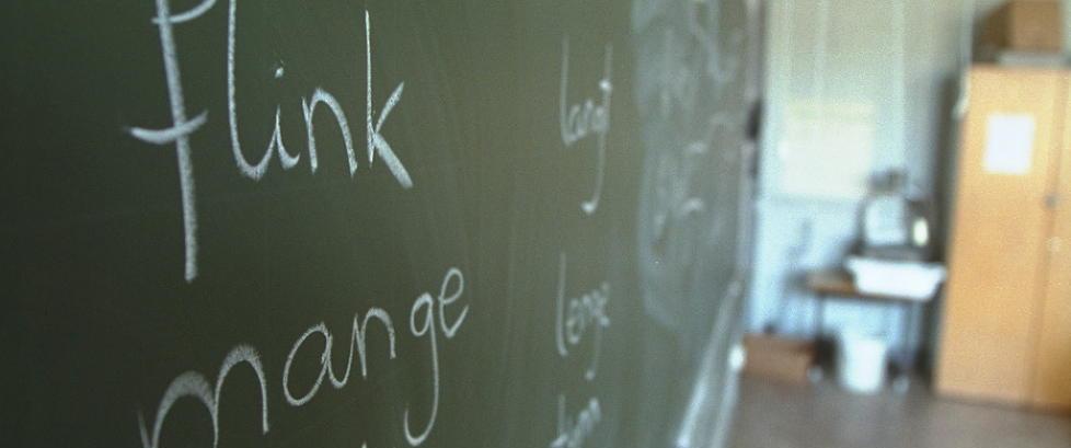Mange elever og foreldre tror �tilpasset oppl�ring� betyr �spesialbehandling for akkurat meg�.