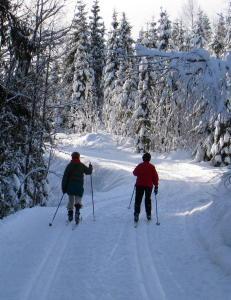 Meteorologene til skifolket: Kom dere ut p� s�ndag!