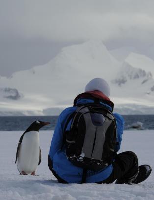 Du sitter og nyter utsikten i Antarktis n�r en av  av de lokale stopper opp for � sl� av en prat