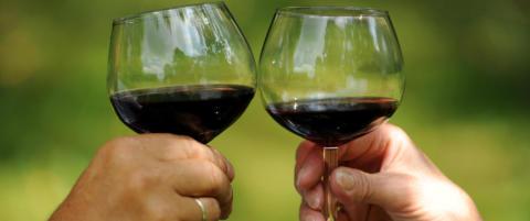 Ekspertenes dom: Er litt alkohol bra for helsen?