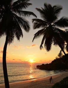 Vakre Seychellene har f�rre turister i l�pet av ett �r enn til London har i l�pet av en helg