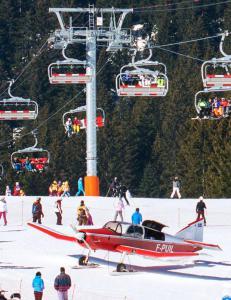 Polsk skil�per truffet av fly i Alpene