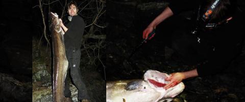 Hvem er lengst? Helge eller fisken han fikk p� kroken?