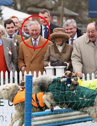 Bildene g�r verden rundt: Prins Charles knakk sammen av sauel�p