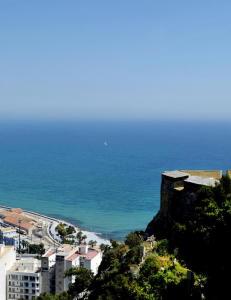 Du har ikke sett Alicante f�r du sett denne utsikten