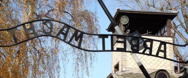 Bokholderen i Auschwitz for retten i Tyskland
