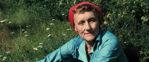 Sara (12) kastet brevet fra Astrid Lindgren i toalettet