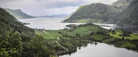 Redd F�rdefjorden