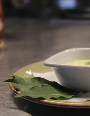 Kokkelandslagets desserthemmelighet finner du p� Plantasjen