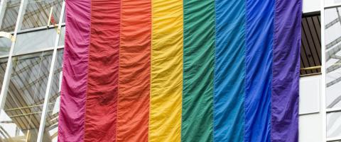 Homofobi: NFF burde g�tt i bresjen