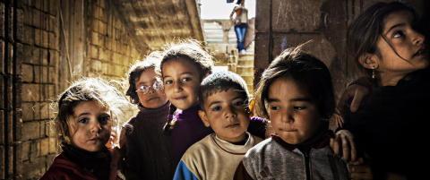 Halvert matvarehjelp til syriske flyktninger