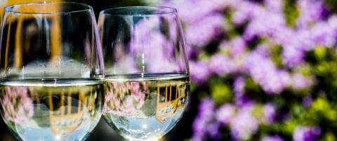 Sekser-bonanza: Her er �rets beste vin-nyheter