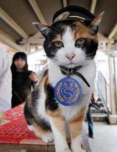 Tama reddet togselskapet da hun ble  stasjonsmester. N� er hun d�d og opph�yet til gudinne