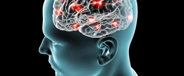 Dette gj�r nettbruken med hjernen