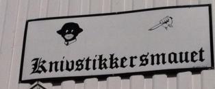 Skiltstrid i Krager�: N�r skal nordmenn skj�nne tegninga?