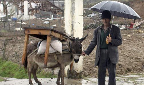 TRAGEDIA I ALBANIA: Denne mannen st�r sammen med eselet foran det �delagte huset sitt i Gerdec, 1,6 mil utenfor Tirana. I mars omkom 18 mennesker da en serie eksplosjoner gikk av ved et ammunisjonslager. Foto: Arben Celi