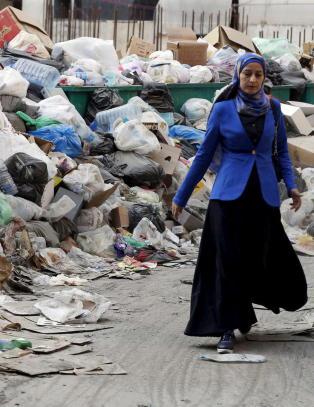 Libanon stinker