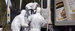 Over 70 d�de migranter i lastebilen i �sterrike
