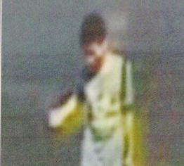Den mistenkte Bangkok-bomberen er p�grepet