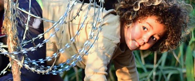 Derfor har ungarske myndigheter bygd en fire meter h�y vegg for � stoppe migrantene