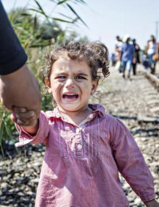 Desperate syrere flykter fra piggtr�d-leirer i Ungarn