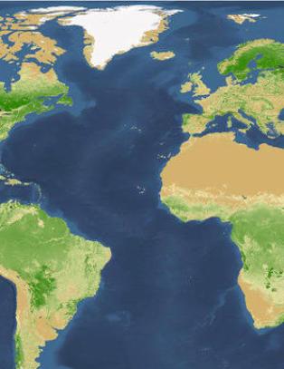 Fikk seg en overraskelse: Forskere har funnet ut hvor mange tr�r vi har p� jorda