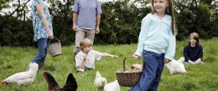 Hvis flere i n�r familie har hjertesykdom, b�r varselbjellene ringe