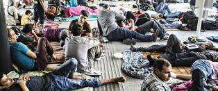 Tyskland og �sterrike vil slippe inn Ungarn-flyktninger