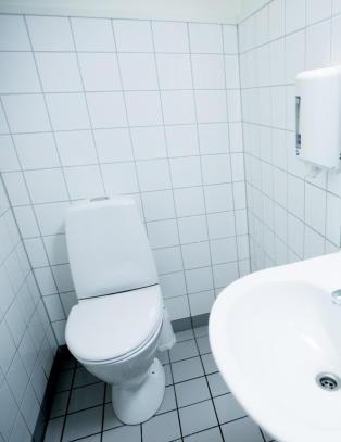 Mangler du et samtaleemne som engasjerer? Fors�k �toalettvaner�