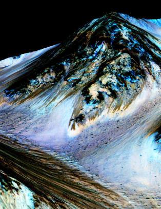 Forsker om saltvannet p� Mars:- Som � finne rottegift i �keren