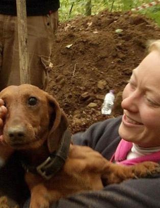 R�rer hele Danmark: Her reddes hunden Fighter etter � ha v�rt levende begravd i fire d�gn