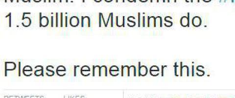 Muslimer verden over ford�mmer Paris-terroren ved � skrive �I Am A Muslim�