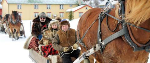 En tur med hest og slede over R�rosvidda er en vakker reise i tid