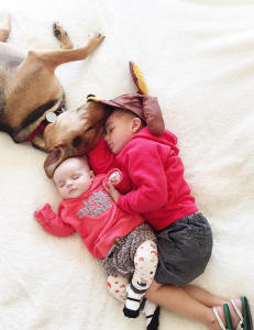 Hver eneste dag tar Evangeline og Beau en skikkelig hundeblund