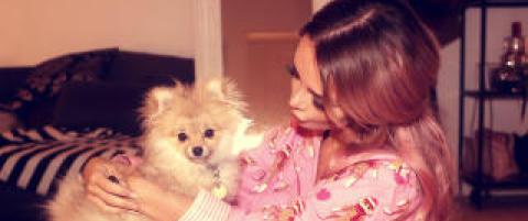 Nytt�rsmareritt for Sophie Elise: Trodde hunden hadde frosset i hjel
