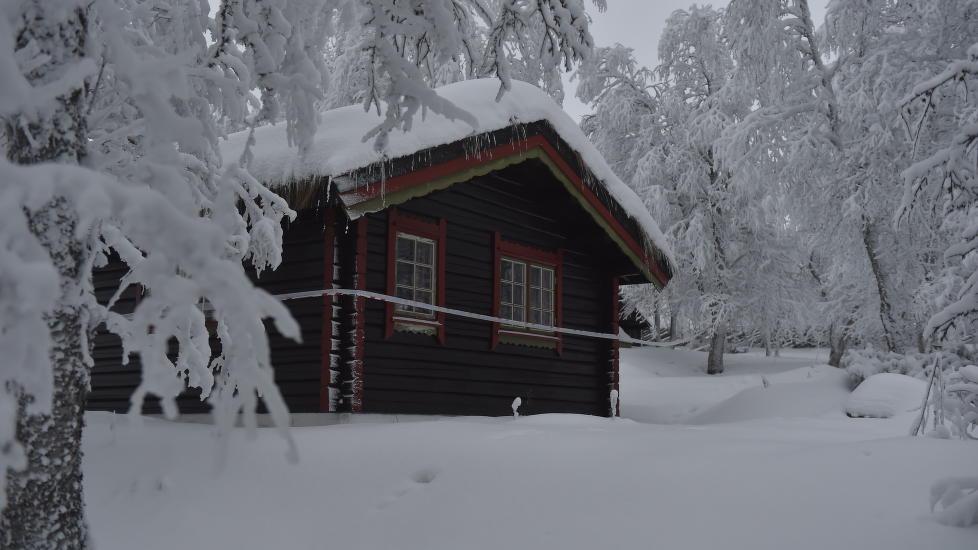 SPERRET AV: Politiet har sperret av hytta hvor 13-�ringen ble funnet d�d. Foto: �istein Norum Monsen / Dagbladet