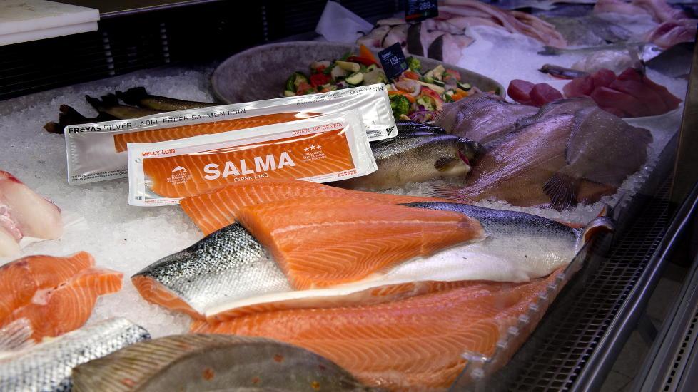 Dyr fisk:  Lakseprisen har n�dd rekordh�ye niv�er den siste tiden.  Foto: �istein Norum Monsen / DAGBLADET