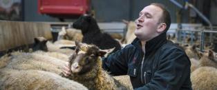 Hos en sauebonde i Uskedalen fikk Jon Georg Dale (31) se landbrukets dr�mmeframtid