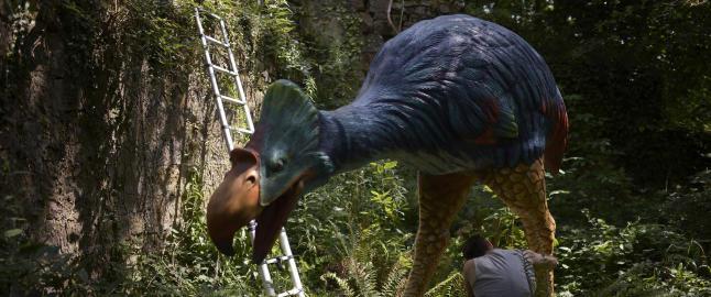 Denne gigantiske fuglen vandret rundt i Arktis for 53 mill. �r siden