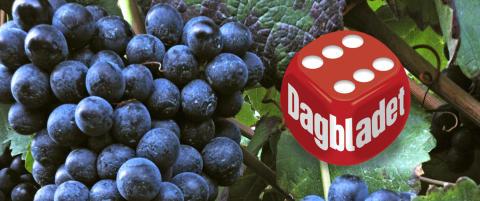 Ny folkefavoritt: Vinene er sjarmerende og lette � like